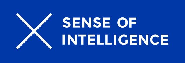Sense of Intelligence